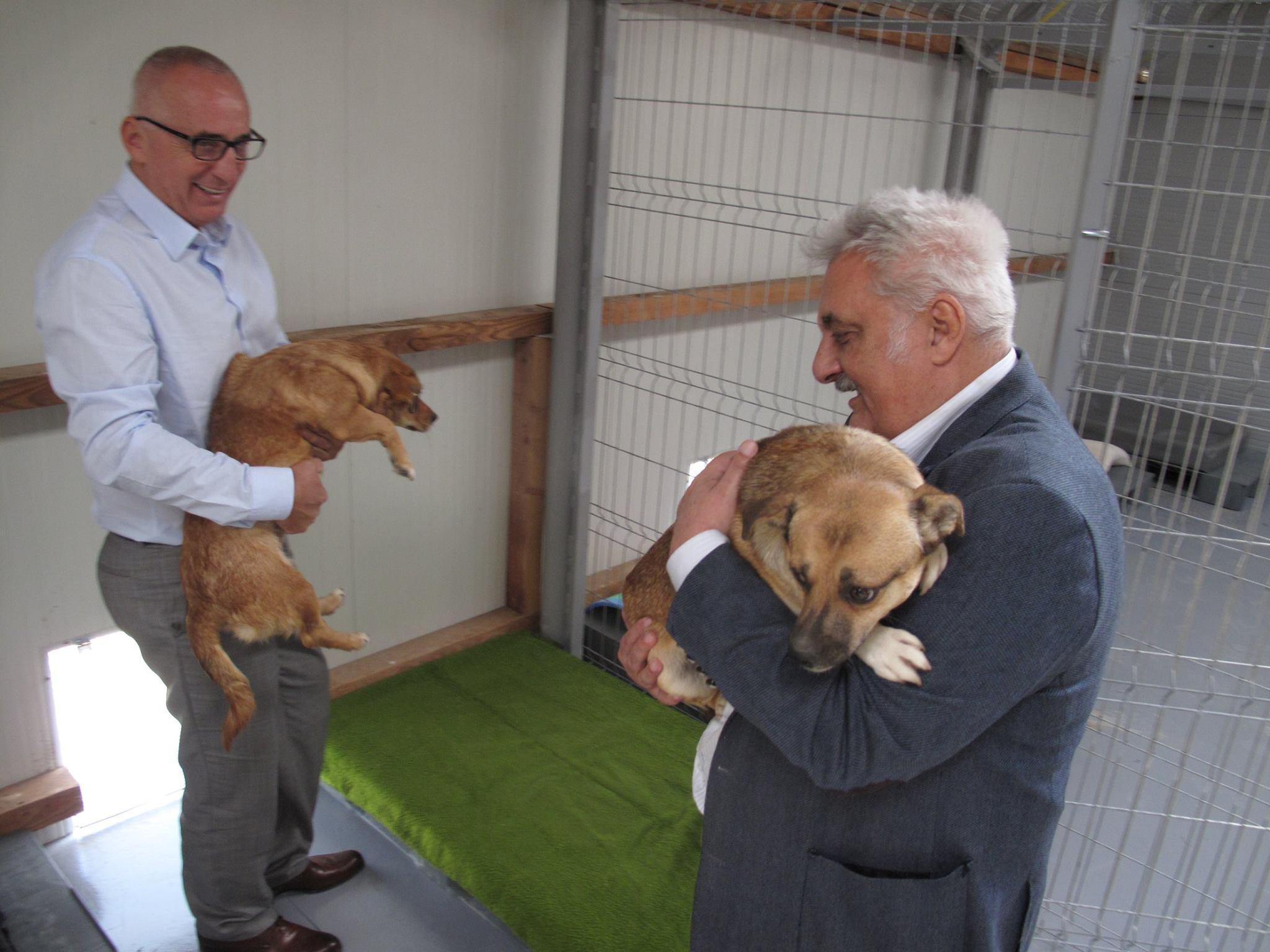 New shelter SusyUtzinger Tierschutz